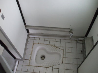 Squat toilet on board a Turkish sleeper car on a train crossing Bulgaria from Istanbul to Bucharest.