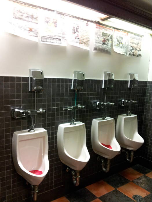Urinals in Darcy McGee's in Ottawa.
