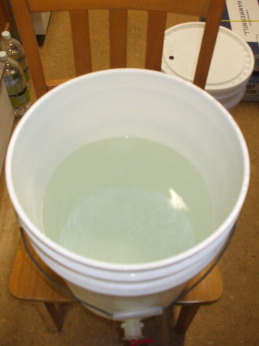 Large white polyethylene bucket half filled with chlorimated tap water.