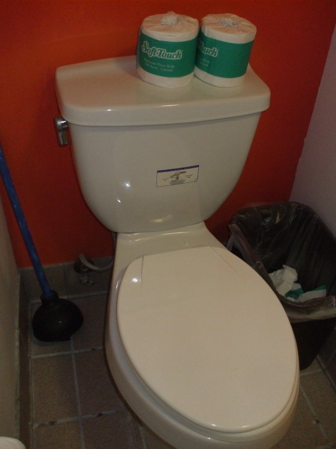 Dual-flush toilet with a vertical handle on the side of the tank.