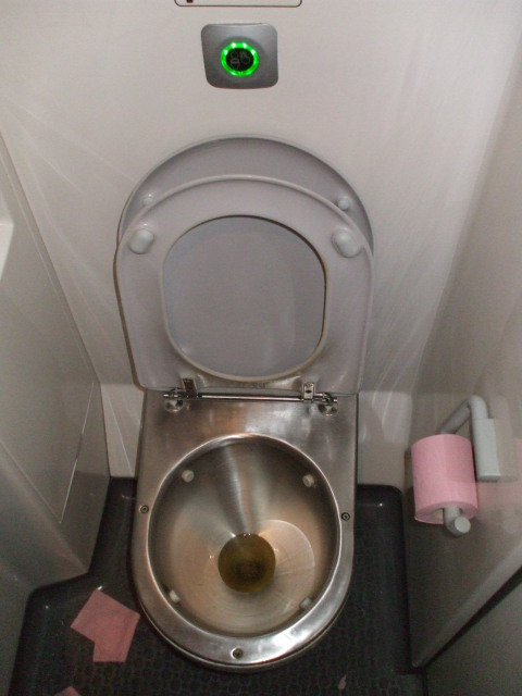 French RER regional train toilet.