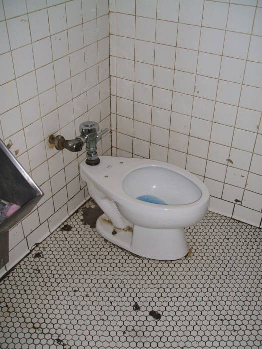 Early to Mid 20th Century American Toilets