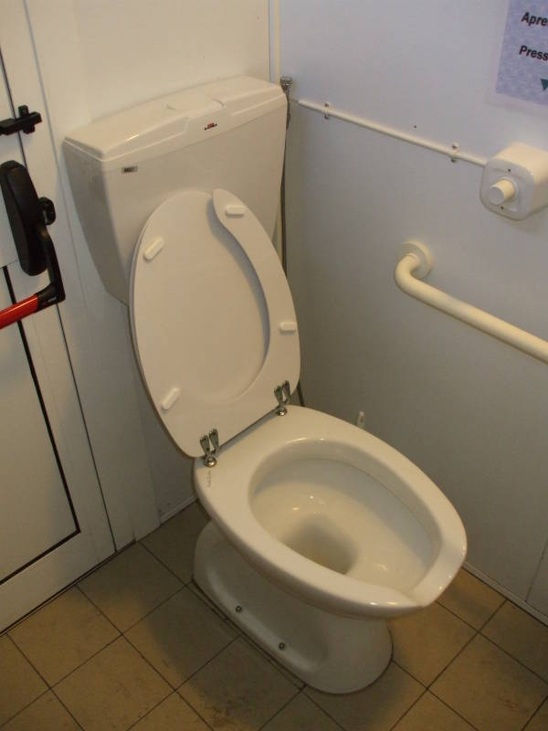 italian toilets and other plumbing / toilets of the world