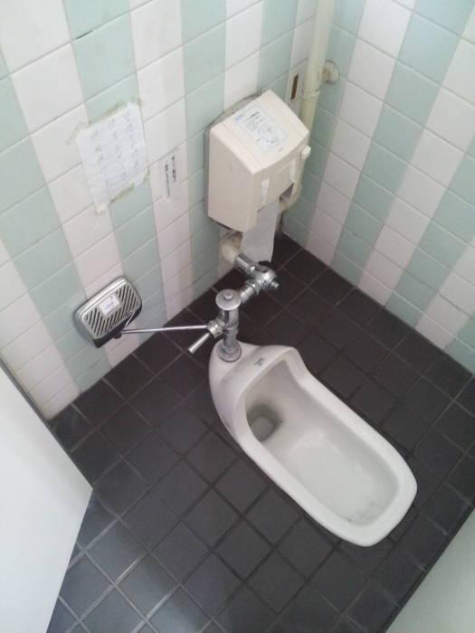 Toilet With Pressure Flush