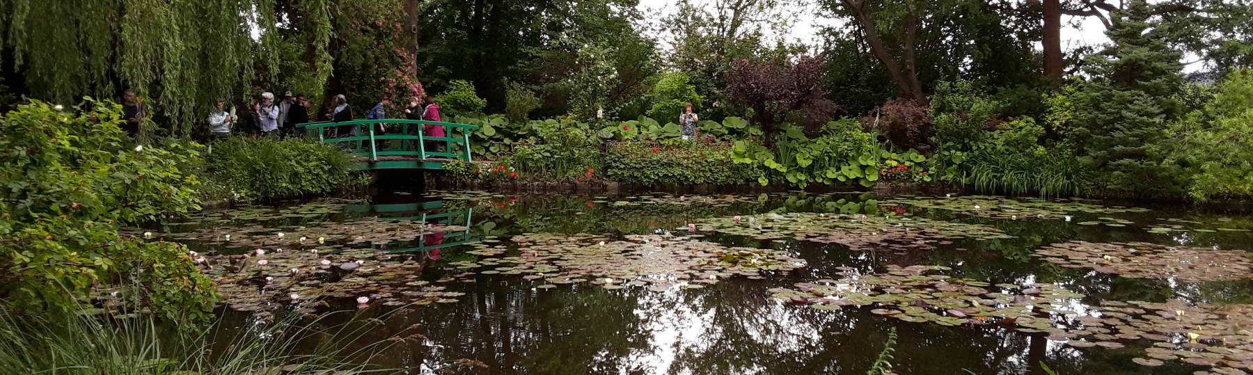 Claude Monet's water garden.
