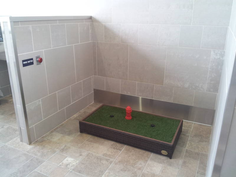 Toilets for dogs in the Detroit airport.