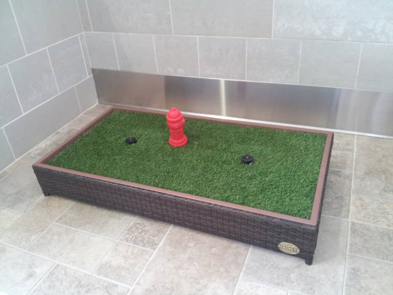 A Doggy Toilet at Detroit Metropolitan Wayne County Airport. A similar toilet was found inside the WoofBus.