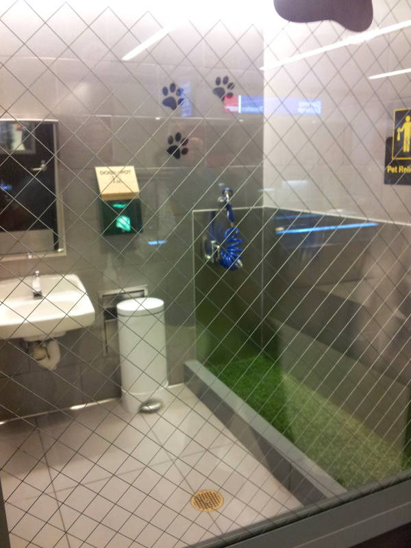 Service animal and pet relief area at New York JFK airport.