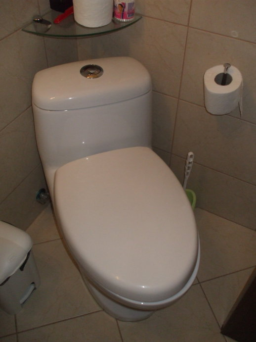 Toilet with two sizes of seats.  Both seats and lid down.