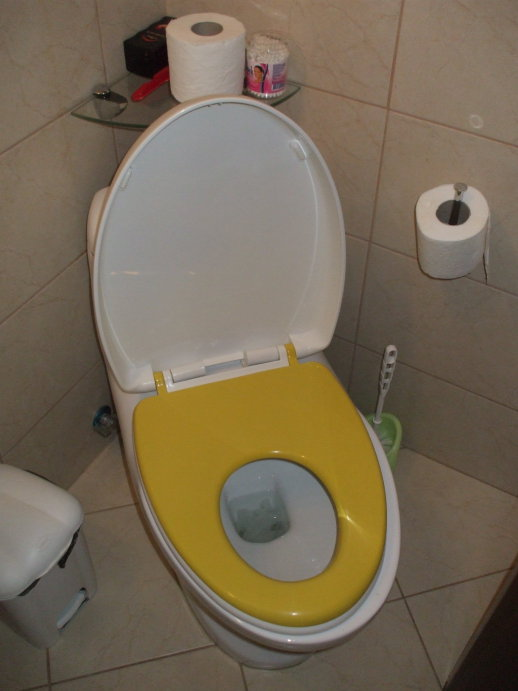 Toilet with two sizes of seats.  Lid up, both seats down, configured for child use.