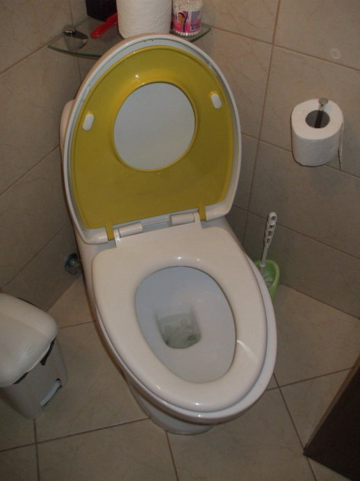 Toilet with two sizes of seats.  Lid and child's seat up, adult seat down, configured for adult use.